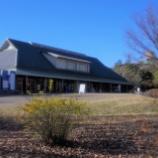 『12月の国営昭和記念公園;立川市』の画像