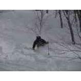 『オフピステチャレンジ1 今日は姥沢からの新雪を楽しみました。オフピステチャレンジ1 今日は姥沢からの新雪を楽しみました。』の画像