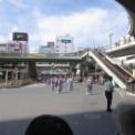 2016年 第43回藤沢市民まつり その3(江の島囃子保存会)