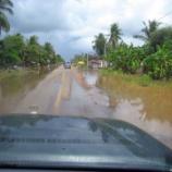 『2011.10.11 カンボジアの洪水の状況』の画像