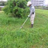 『草刈り』の画像