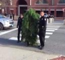 交差点で木に仮装して立っていた男が、交通を妨げた罪で逮捕される