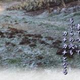 『里山の朝』の画像