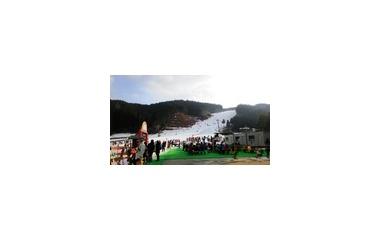 『スキーに行ってきました!』の画像