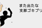 【日中】3人集まると龍になる日本人、3人集まると虫けらになる中国人=中国報道