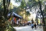 初詣に獅子窟寺に行ってみた!お正月三が日は国宝が特別拝観できちゃいます!