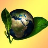 【朗報】地球さん、なぜか自然が超回復し始める