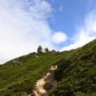 『日本三百名山 越百山へ☆その3 山頂&下山♩』の画像