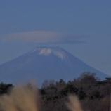 『富士山(年末から三が日)』の画像