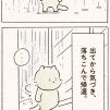 猫はじめ氏、不思議な生態1