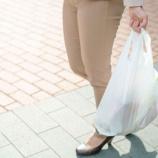 『タイ 旅行者にビニール袋の使用を禁止』の画像