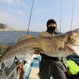 『3月6日 釣果 スロージギング マダラエンドレス(^^♪ 帰りにちょこっと根魚!!』の画像