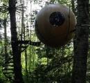 森に浮かぶ球体ホテルが不思議すぎます!まるで別の惑星にきたみたい