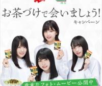 【欅坂46】お茶漬けコラボ、結局どれ買えば一番いいの!?