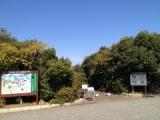 『山口県立きらら浜自然観察公園を巡る(前編)』の画像