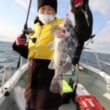 『12月26日(水) 釣果 スロー・ライトジギング』の画像