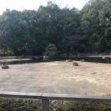 『戸田市役所西側・戸田市文化会館南側の後谷公園の池に異変が!埋め立てたの?真実はなんと・・・。滅多に見られない光景。ぜひ、足をお運びください。』の画像