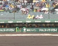 【悲報】阪神VSヤクルト 雨のため中断