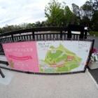 『ペンタックス用LAOWA60mmF2.8マクロによる里山ガーデン 2019/05/03』の画像