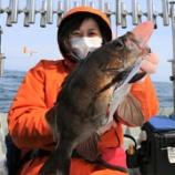 『3月27日 釣果 スーパーライトジギング メバルジギング』の画像