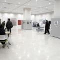 第15回WILL美術家展に出品、現在開催中です!