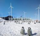 南極の人口が急増中 移住する人間が続出 4000人が暮らしている