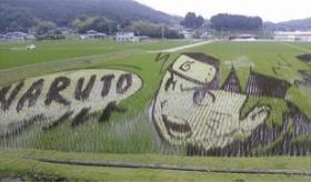 【日本の芸術】    日本の 田んぼアートが すげえぇぇえええええ!!    海外の反応