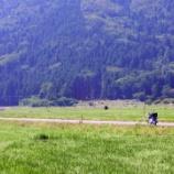 『奥琵琶湖パークウェイに行ってきた(走れてない』の画像