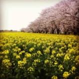 『福岡で開催予定です』の画像