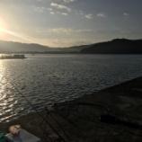 『紀州アジ釣り、リベンジに行くもチョイ微妙(防波堤 in 和歌山 2020/11/15)』の画像