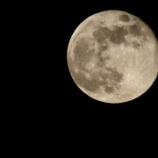 『月と太陽』の画像