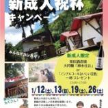 『新成人祝杯キャンペーン2019【ウッドデザインパーク】【岡崎市】』の画像