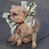 『【書評】サラリーマン必見!『どんな人にも1つや2つ儲けのネタはある!』』の画像