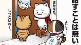 【リスカブス】韓国「文在寅が送った祝賀書簡の返事が来ない!」→加藤官房長官「承知しておりません」と一蹴wwwww