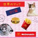 『【世界のマック】を食べてみよう!【タイ編】』の画像