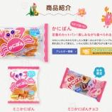 『三立製菓の「かにぱん」が夏頃まで一時製造休止、かにぱんお姉さんがTwitterで周知』の画像