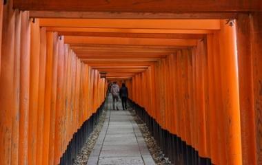 『【5日目】そうだ 京都、行こう 2019/11/28(木)』の画像