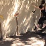 『桜井玲香 ポーランドの動物園で大ジャンプww 動画ですw【乃木坂46】』の画像