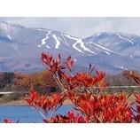 『雫石スキー場のコースも白くなりました!』の画像