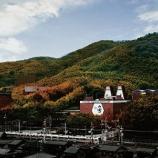 『【ライブ配信】山崎・白州「蒸溜所オンラインツアー」をYouTubeで』の画像