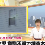 『愛知県美浜町「7歳事件」母親が犯人で病気と2chが特定か【画像】』の画像