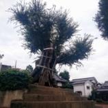 『「宮鼻八幡神社の大ケヤキ」〜島田橋に近い推定樹齢700年の大ケヤキ〜』の画像