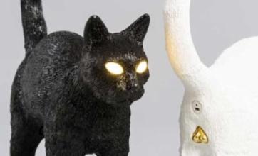 猫の肛門にコネクタを入れるランプが話題に