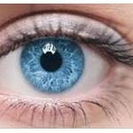自分の歯にレンズ埋め、移植して視力復活する技術がすごい!!