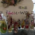 河西いちご園と菊地観光梨園の日記