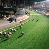 『【新型コロナウィルス】「競馬場にVIPの入場認めず」』の画像