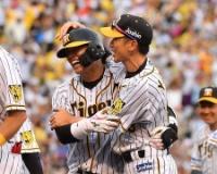 【朗報】矢野政権支持率84%yyyyyyyyyyyyyyyyyyyyyyyyy