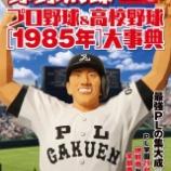 『野球太郎Secial Edition プロ野球&高校野球[1985年]大事典』の画像