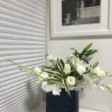 『春の花 ホワイトゴージャス』の画像