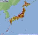 【40度】  新潟がヤバい!三条39.5℃ 長岡39.4℃